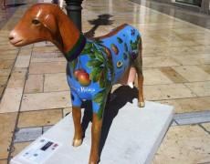 Exposición De Cabras Malagueñas